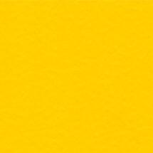 POL-05-Citrus-Yellow-215X215