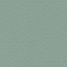 POL-09-Grey-Ashes-215X215