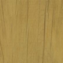 WE-C3-Canary-Wood