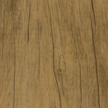 WE-C4-Chicory-Wood