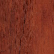 WE-C8-Red-Chestnut